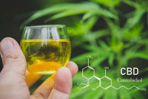 Safety Of CBD